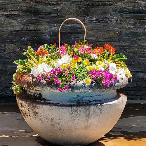 Seasonal Color Pots