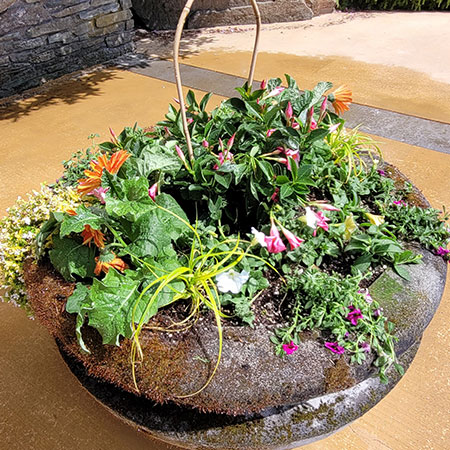 Container Garden Plantings Bring Life And Movement Into Your Home. They  Become An Expression Of Your Style And Create An Inviting Atmosphere To  Both Indoor ...